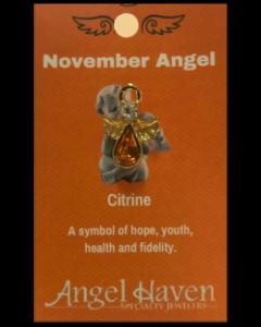November Angel Pin